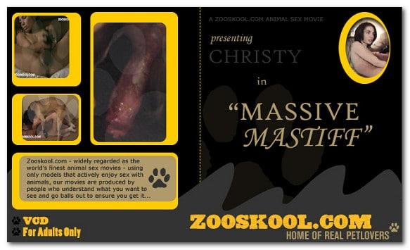 Home Of Real PetLover - Christy Massive Mastiff