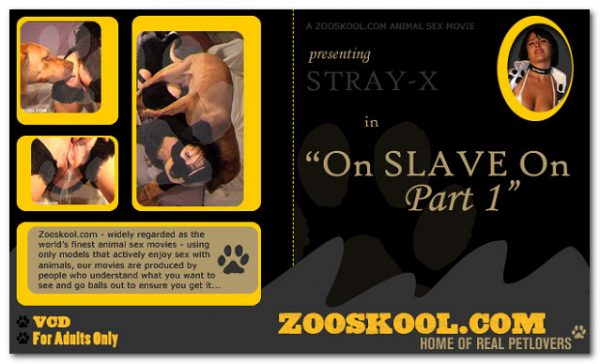 Home Of Real PetLover - Strayx On Slave On 1