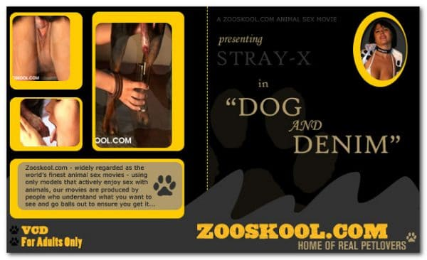 Home Of Real PetLover - Strayx Dog And Denim