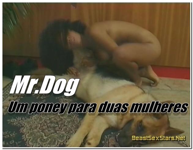 Mr.Dog - Um poney para duas mulheres