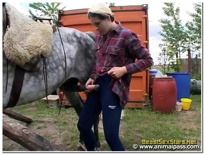 Sex pic horse Explore the