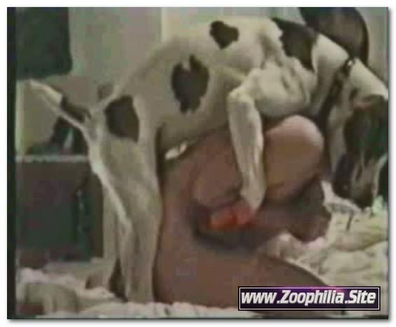 Amateur Animal Sex - 789