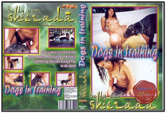 Sherada - Dogs In Training