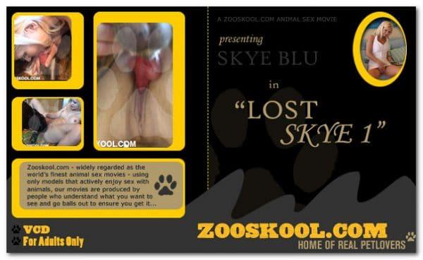 Home Of Real PetLover - Skye Blue Lost Skye 1
