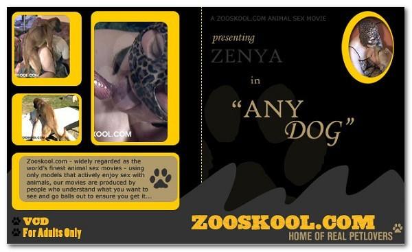 Home Of Real PetLover - Zenya Any Dog