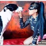 Tigerlily - Hard Dog Life 1